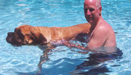 Dog Pool Therapy